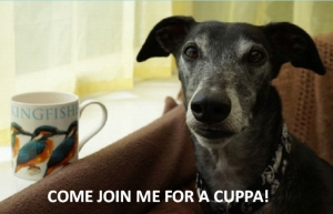 Coffee Morning - Friday 19th June - in support of Fen Bank Greyhound Sanctuary